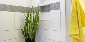Master shower porcelain ceramic tile large format subway colour & dimensions glazed white oyster gray grout joints shampoo niche decorative border band of cristallo glass by thompson tile & stone